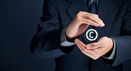 筑润关于案例知识产权保护的管理办法